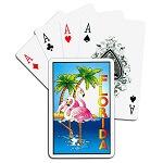 Best Casinos in Florida