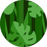 jungle themed slots